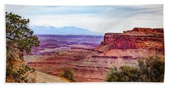 Bath Towel featuring the photograph Canyonlands National Park by James Woody