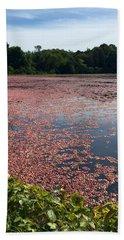 Cape Cod Cranberry Bog Bath Towel by Beth Saffer