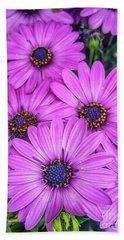 Cape Daisys - Purple Bath Towel