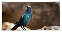 Cape Glossy Starling Hand Towel by Jane Rix