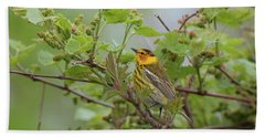 Cape May Warbler Hand Towel