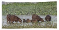 Hand Towel featuring the photograph Capybara by Wade Aiken