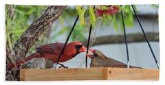 Cardinal Feeding  Hand Towel