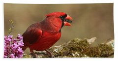 Cardinal In Spring Bath Towel by Sheila Brown