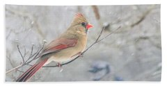 Cardinal In Winter Hand Towel