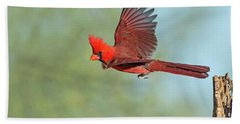 Cardinal On A Mission Hand Towel