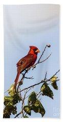 Cardinal On Treetop Bath Towel by Robert Frederick