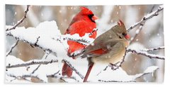 Cardinals In The Winter Bath Towel