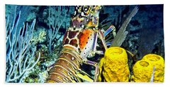 Caribbean Reef Lobster Hand Towel