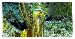 Caribbean Squid At Night - Alien Of The Deep Hand Towel