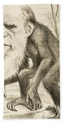 Caricature Of Charles Darwin Hand Towel by English School