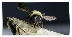 Carpenter Bee Bath Towel