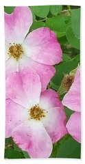 Carpet Roses Hand Towel