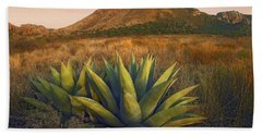 Casa Grande Butte With Agave Hand Towel