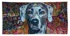 Cash The Blue Lacy Dog Hand Towel