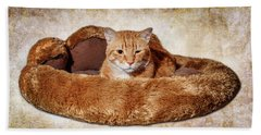 Cat Bed Hand Towel by Doug Long
