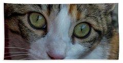 Cat Eyes Bath Towel