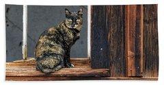Cat In A Window Hand Towel by Scott Warner