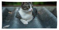 Cat In The Cradle Hand Towel