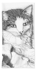 Domestic Cat Hand Towel