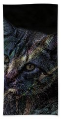 Cat Of Many Colors Soft Hand Towel by Lesa Fine