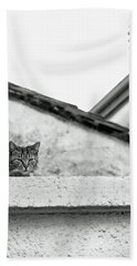Cat On A Roof, Varenna Hand Towel by Brooke T Ryan