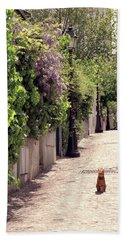 Cat On Cobblestone Hand Towel
