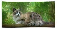 Cat On The Railing Hand Towel
