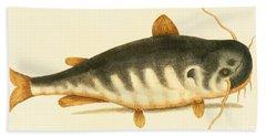 Catfish Hand Towel by Mark Catesby