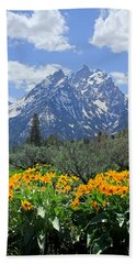 Dm9328-cathedral Group Tetons  Hand Towel