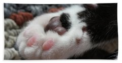 Cats Paw Hand Towel by Kim Henderson