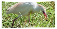Cattle Egret Catching A Spider Hand Towel