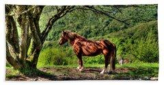 Cavalla Plains Horse - Cavallo Al Pian Della Cavalla Bath Towel