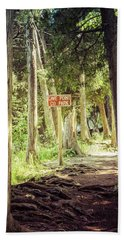 Bath Towel featuring the photograph Cave Point Trails by Joel Witmeyer