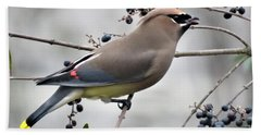 Cedar Waxwing 2 Bath Towel by Kathy Long