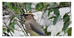 Cedar Waxwing 3 Bath Towel by Kathy Long