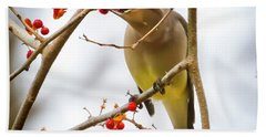 Cedar Waxwing Feeding  Bath Towel