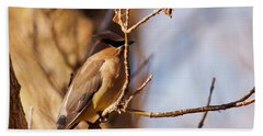 Cedar Waxwing In Autumn Bath Towel