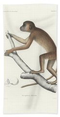Central Yellow Baboon, Papio C. Cynocephalus Bath Towel