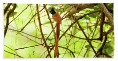 Ceylon Paradise Flycatcher Bath Towel