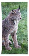 Champion Mama Lynx Hand Towel