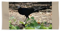 Charleston Wildlife. Black Bird Hand Towel