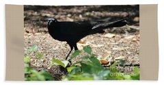 Charleston Wildlife. Black Bird Bath Towel