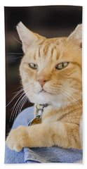 Charlie Cat Bath Towel
