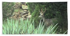 Hand Towel featuring the photograph Chasing Velvet Antlers 1 by Natalie Ortiz