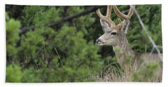Hand Towel featuring the photograph Chasing Velvet Antlers 4 by Natalie Ortiz