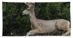Hand Towel featuring the photograph Chasing Velvet Antlers 5 by Natalie Ortiz