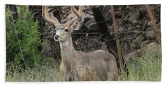 Hand Towel featuring the photograph Chasing Velvet Antlers 6 by Natalie Ortiz