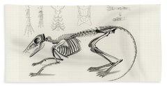 Checkered Elephant Shrew Skeleton Bath Towel