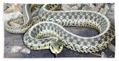 Checkered Garter Snake Hand Towel